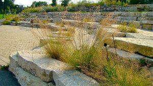 prarie-dropseed-rock-wall-river-park-fall