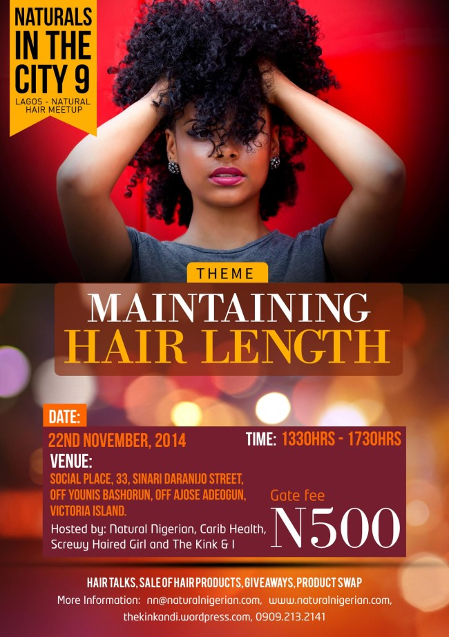 Lagos Natural Hair Meet Up NITC9