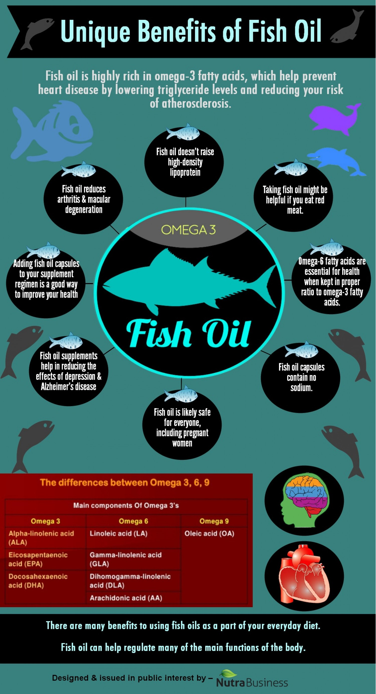 8 Unique Benefits Of Fish Oil Infographic