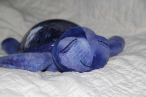 Natural Parents Network Giveaway: Tranquil Turtle From Cloud B — $47.95 ARV {7/27; US}