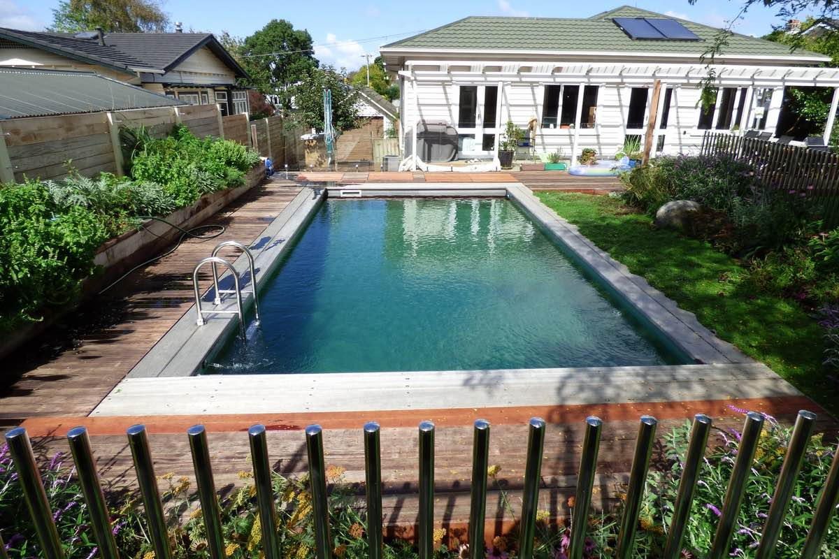 Living Pool Epsom  Natural Pools NZ
