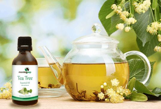 Art Natural Tea Tree Essential Oil