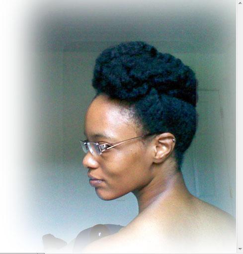 natural hair updo  NaturalReviewNatural Hair Natural Living