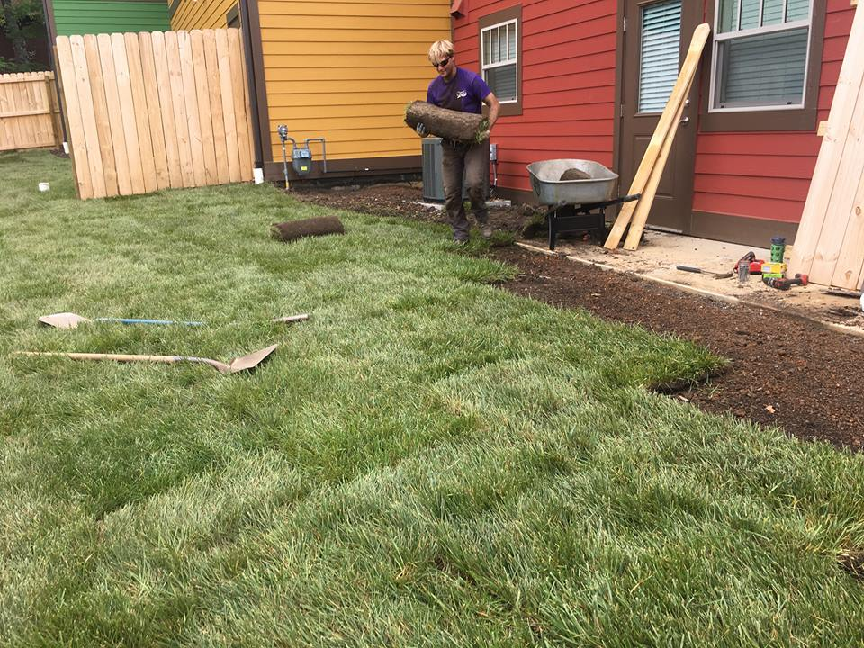 Fast and excellent sod installation