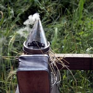 Rauhnächte: Räuchern, Rituale & mehr