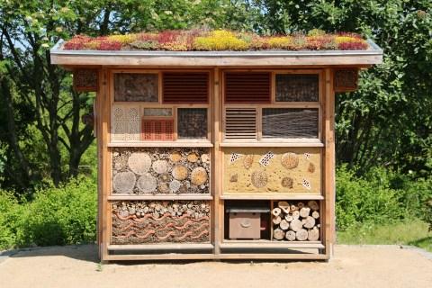Insektenhotel - Naturheilkunde