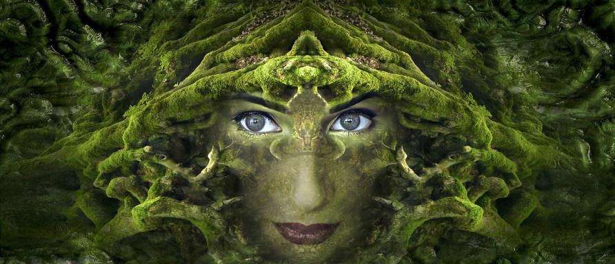 Aktivierung der Zirbeldrüse | naturalsmedizin.com