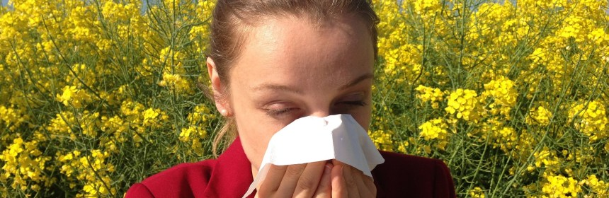 Akuter Heuschnupfen: Diese Hausmittel helfen bei Pollenallergie