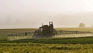 Glyphosat steigert den Ertrag, macht aber krank...