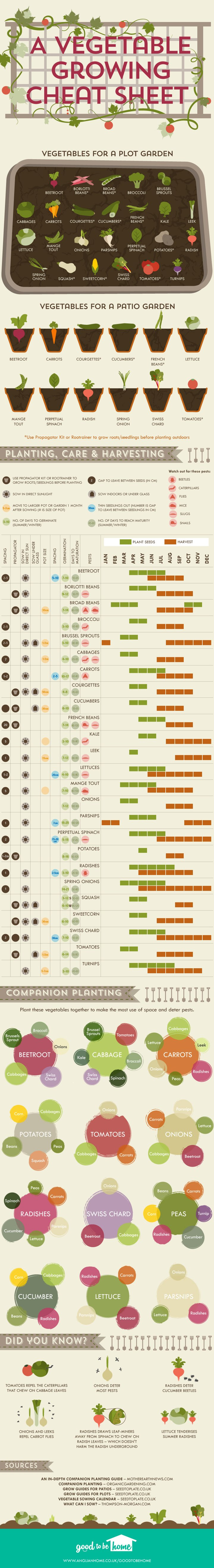 Vegetable-growing-cheat-sheet_720