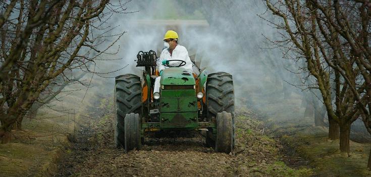 herbicides in handbook of pesticide toxicology