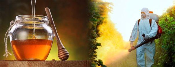 pesticides-herbicide-honey-contaminated-735-285