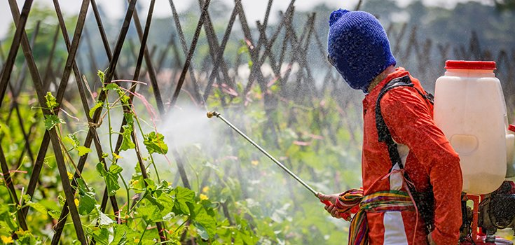 pesticides-man-spraying-735-350