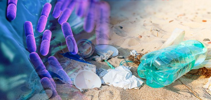Huge Discovery Bacterium that Eats Plastic Waste