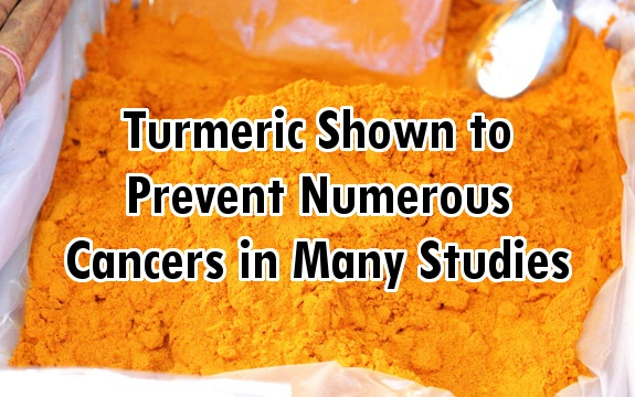 Turmeric Curcumin Shown To Prevent Numerous Cancers In