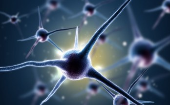 What impacts our cognition?