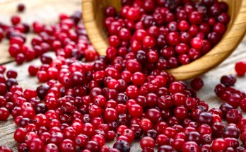 Can cranberries help fight UTIs?