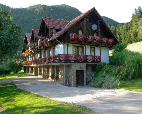 Family Therapist loves Slovenia