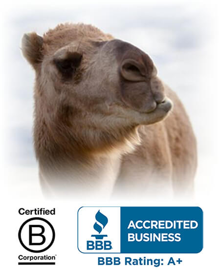 desert-farms-camel-milk-bbb