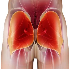 unlock-your-glutes-glute-muscle