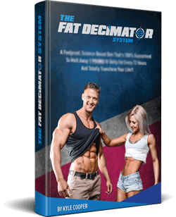 the-fat-decimator-system-review-book