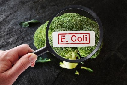 E. Coli Outbreak: How to Keep Yourself and Your Family Safe