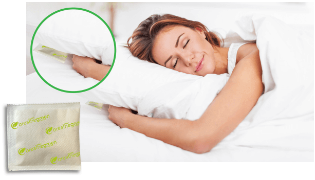 Breathe Green Mite Fighter Review pillow 2