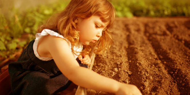 Health Benefits of a School Garden & How to Start One_Build