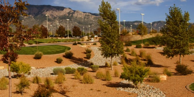 How to Save Money with Xeriscape Ideas_Benefits