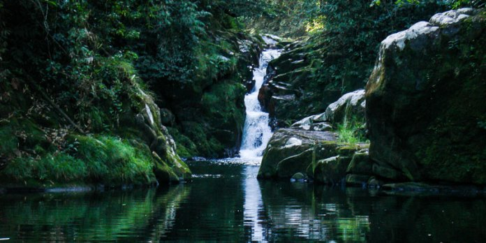 Cachoeiras de Cananéia foto