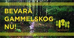 Bevara skog nu - Naturarvet
