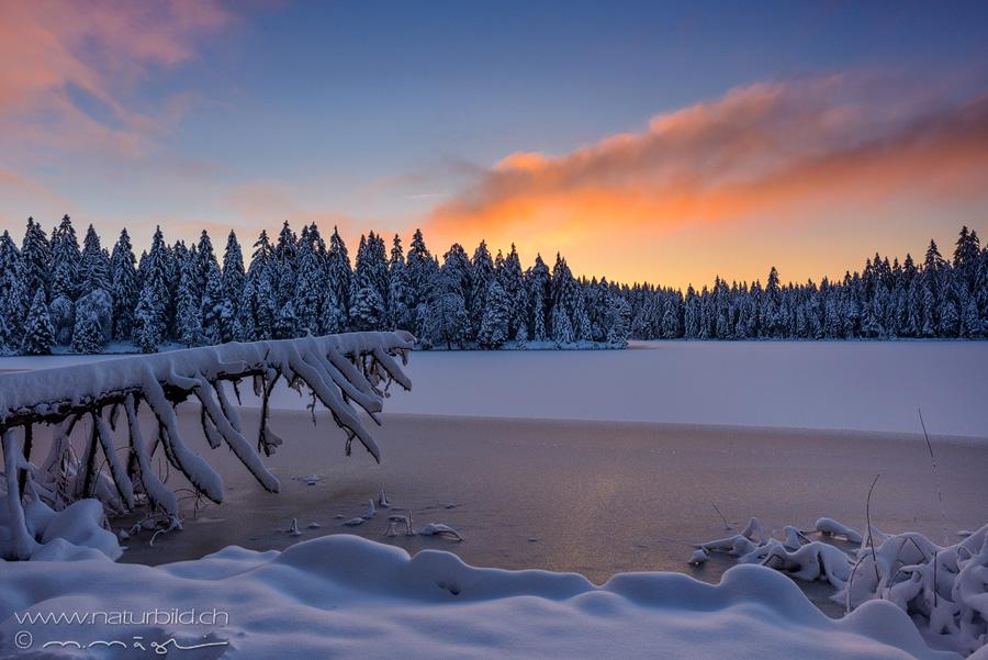 Fotos aus dem Kanton Jura  naturbildch