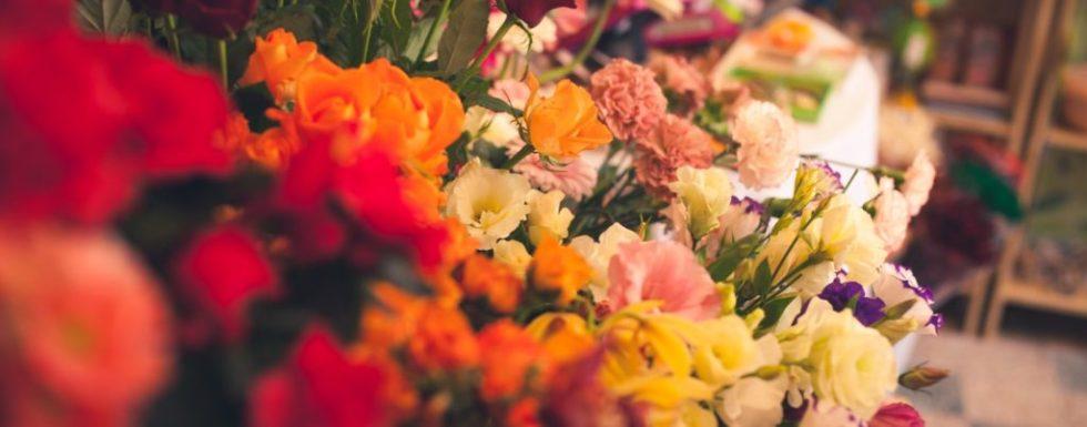 Szeép Virág-Ajándék