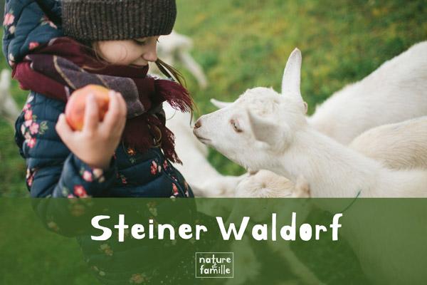 La pédagogie Steiner Waldorf