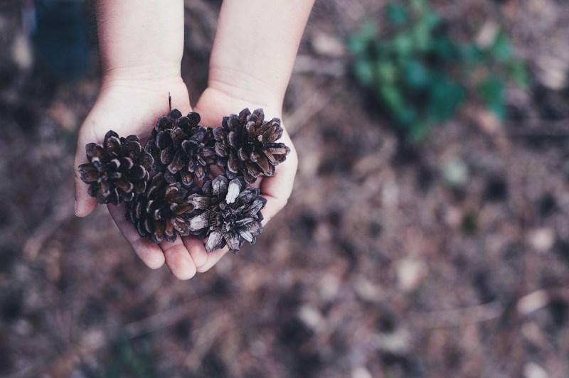 Enfant Montessori jouer avec la nature