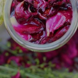 Macérat huileux de Rose