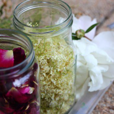Fleurs de sureau, pétales de rose