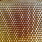 Miel en rayon dans la hausse