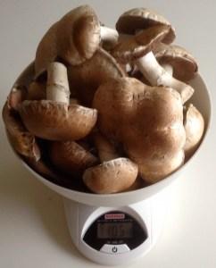 Plus d'un kilo en une seule cueillette