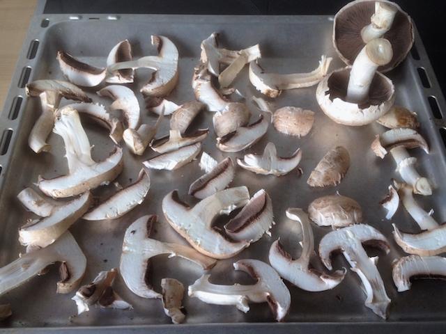 Premier test de séchage des champignons