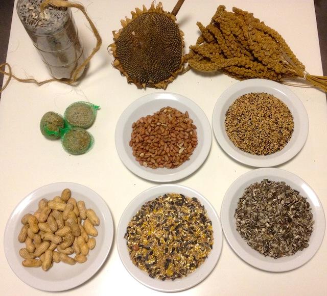 Différentes variétés de graines