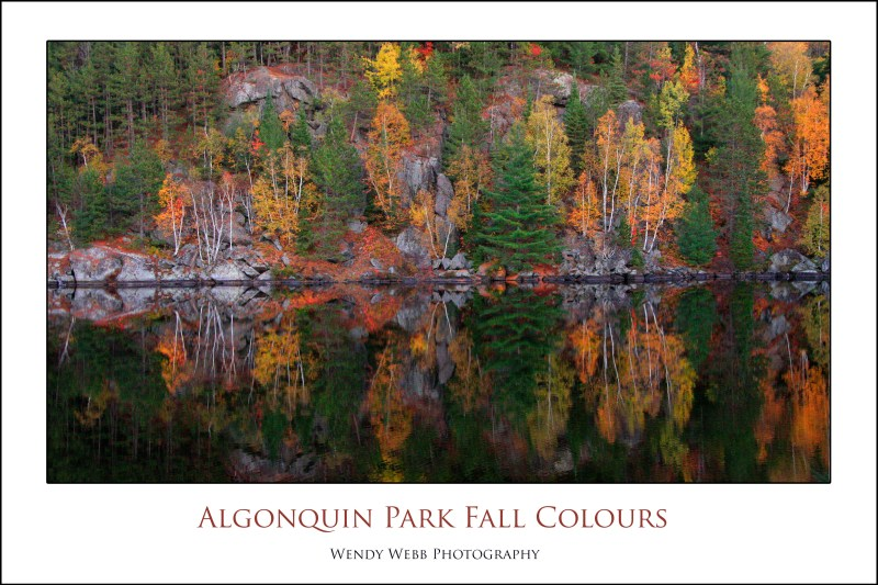 Algonquin Park Fall Colours