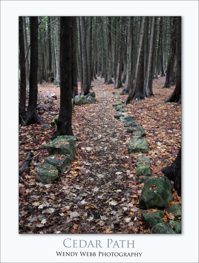 cedar-path