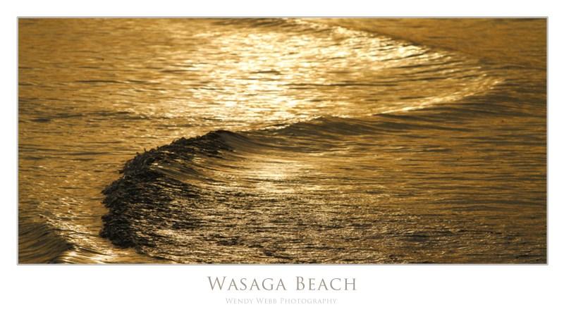 wasaga4
