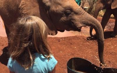 Kenya with Kids: The David Sheldrick Wildlife Trust in Nairobi
