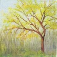 spring-in-woods-copyright-marlene-vitek