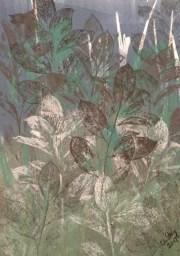 Winter jungle, copyright Catherine Stacy