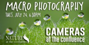Summer Macro Photography : Cameras At The Confluence Photographer Meetup @ Nature At The Confluence Campus