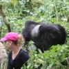 gorilla trek 2