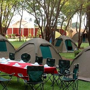 Camping Safari Tours